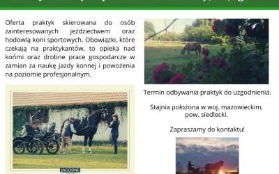 Odnośnik do Praktyki w stajni sportowo-hodowlanej JKS Jagodne